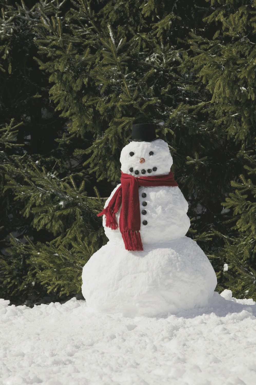 SnowmanHC1312 copy